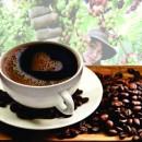 Cà phê An Thái: Tinh hoa của đất trời